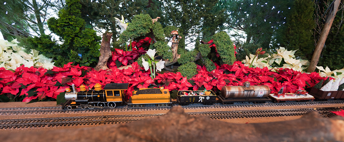 Create a Holiday Tradition with Olbrich's Holiday Express